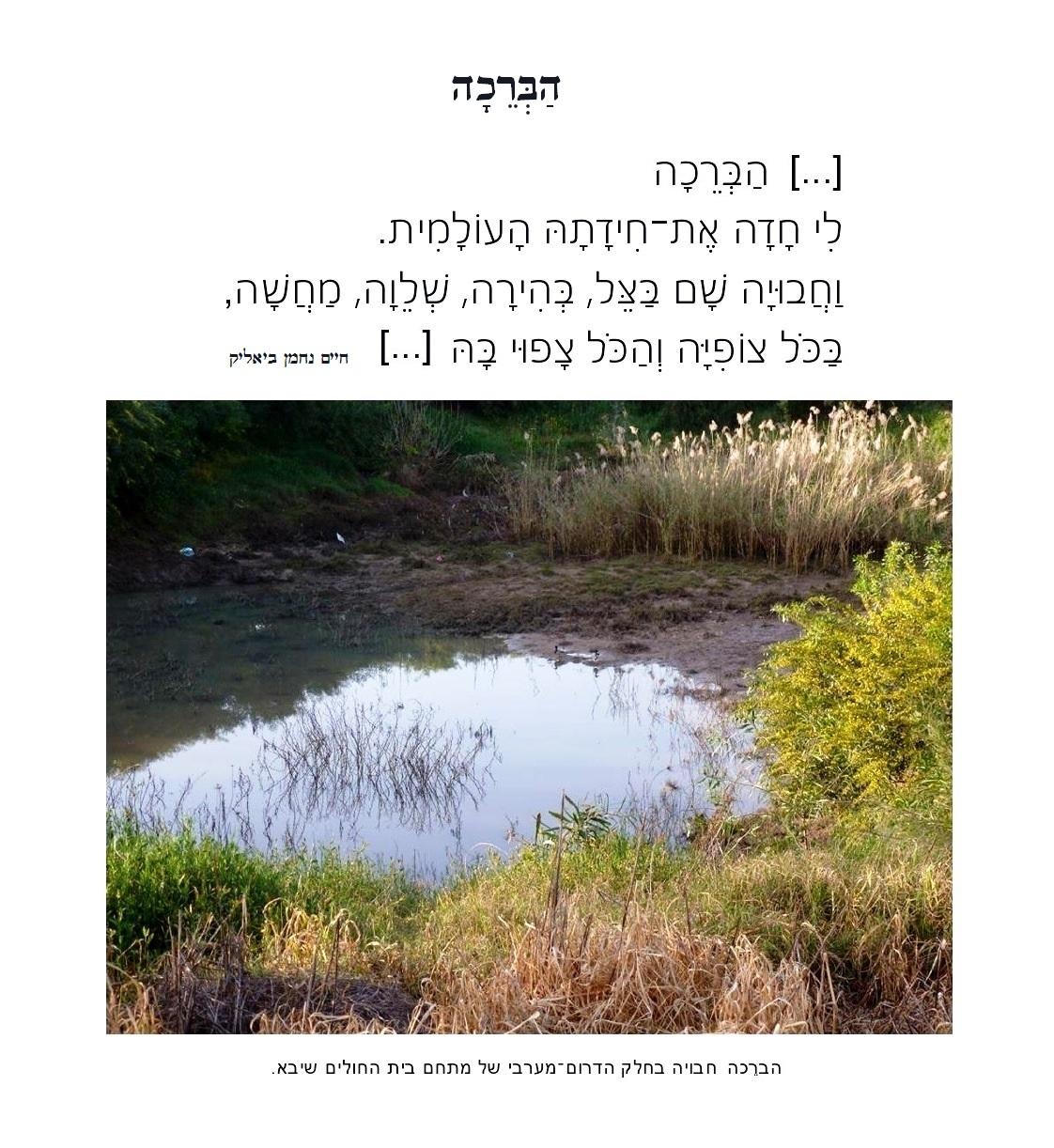 הַבְּרֵכָה-page0001