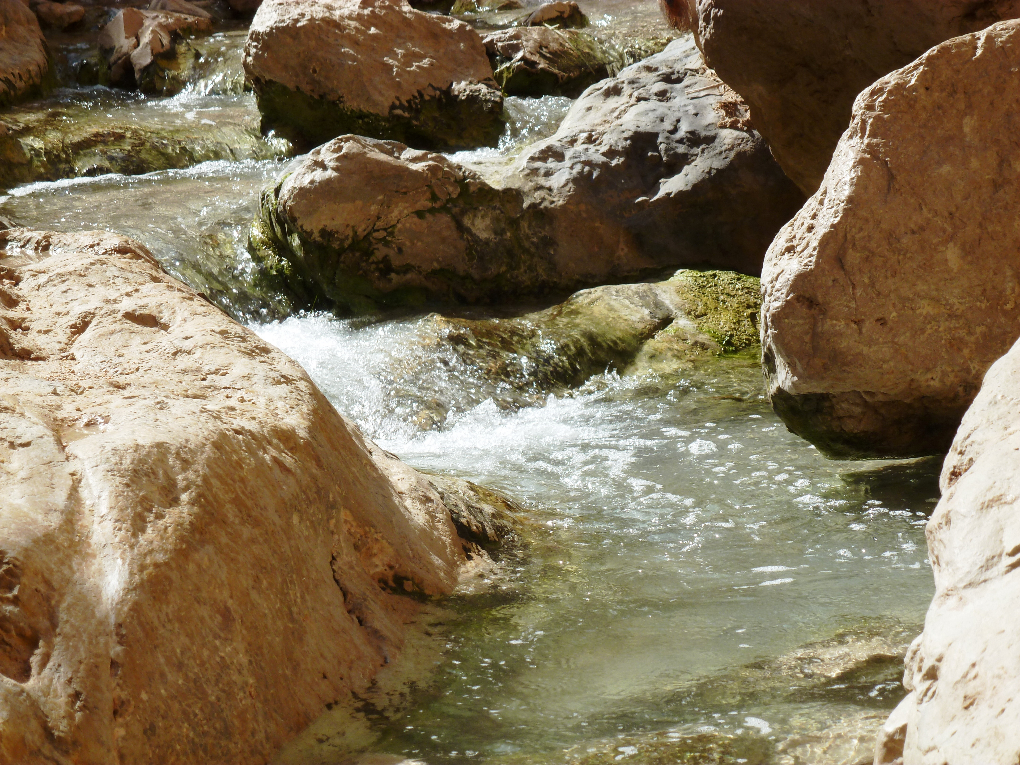 מבועי מים במדבר, ב